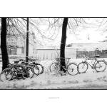 """bicycles and snow"" by maxvuer"