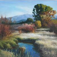 Salt River Stillness Art Prints & Posters by Corena Ricks