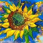 """sunflower"" by graham700"