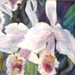 """orchids"" by arlen"