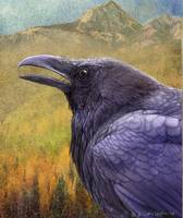 painted raven