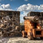 """Cannon at Presidio La Bahía"" by BeautifullyScene"
