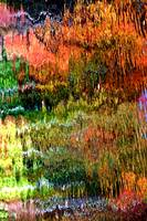 Abstract Tree Reflection