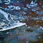 """Shards"" by OnTheFlyPhotography"
