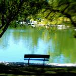 """""""Park Bench"""" by kcpetersen"""