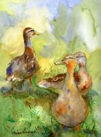 Three Ducks, Impressionist Watercolor Painting Art