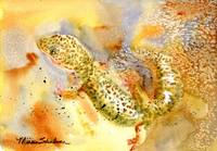 Specko Gecko, Abstract Watercolor Painting Art