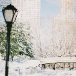 """Central Park Lamp"" by kallelind"