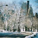"""Central Park Winter Road"" by kallelind"