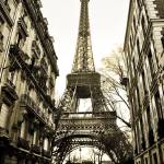 """""""eiffel tower"""" by candidcaptures"""