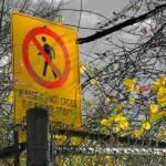 """Do Not Cross"" by AdamSteinbok"