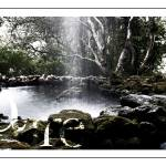 """Nature"" by jocopix"