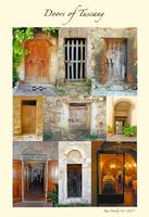 Doors of Tuscany