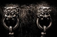 Lion Head Handle
