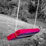 """Backyard Swings"" by jclossphoto"