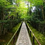 """""""Entrance Walkway, Koto-in Zen Temple, Kyoto"""" by OneMansPerspectives"""