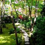 """Okochi-Sanso Gardens"" by OneMansPerspectives"