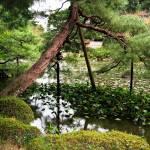 """Pond garden Heian Shrine"" by OneMansPerspectives"