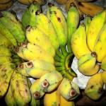"""""""0741 Laos Jan2008_Phonsavan_In the Food Market"""" by OneMansPerspectives"""