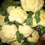 """""""Cauliflower"""" by OneMansPerspectives"""