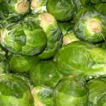 """""""Brussel Sprouts"""" by OneMansPerspectives"""