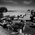 """""""drought sertao_it2061"""" by brazilphotos"""