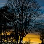 """Sunset Silhouette"" by singularscenes"