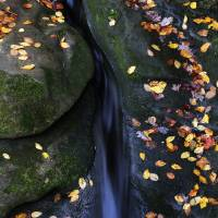 """Stream Through Rock by Jim Crotty"" by Jim Crotty"
