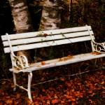 """""""Foresaken Seat"""" by singularscenes"""