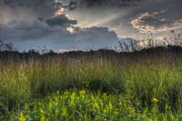 September Prairie 23 by Jim Crotty
