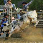 """Ohio Rodeo"" by jimcrotty"