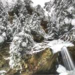 """February Snowstorm in Hocking Hills by Jim Crotty"" by jimcrotty"