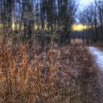 """New Years Day at Sugarcreek by Jim Crotty 4"" by jimcrotty"