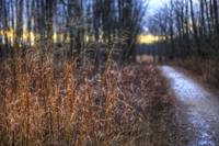 New Years Day at Sugarcreek by Jim Crotty 4