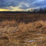 """New Years Day at Sugarcreek by Jim Crotty 5"" by jimcrotty"