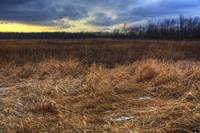 New Years Day at Sugarcreek by Jim Crotty 5