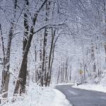 """Winter Road in Dayton"" by jimcrotty"