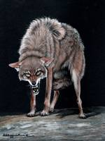 Coyote #1 painting