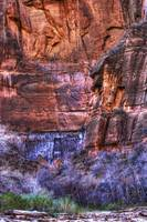 Canyon Color Zion National Park