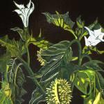"""Jimson Weed"" by Rebecca_Shadrick"