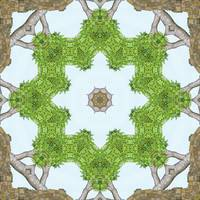 Bark Leaves Stone Kaleidoscope Art 4