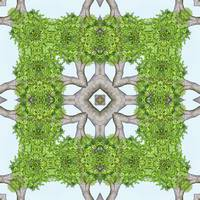 Bark Leaves Stone Kaleidoscope Art 7