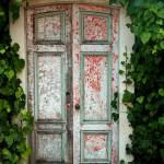 """Door with Ivy"" by burterwinphotography"