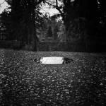 """""""Imagekind"""" by zachelston"""