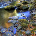 """Autumn Stream Great Smoky Mountain NP"" by jimcrotty"