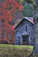 Barn in Autumn at Cades Cove