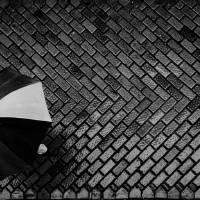 Umbrella Art Prints & Posters by timgraphik