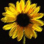 """Abstract Sunflower"" by michellejensen"