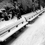 """.snow.benches."" by kacnyc"