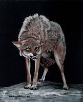 Coyote #2 painting